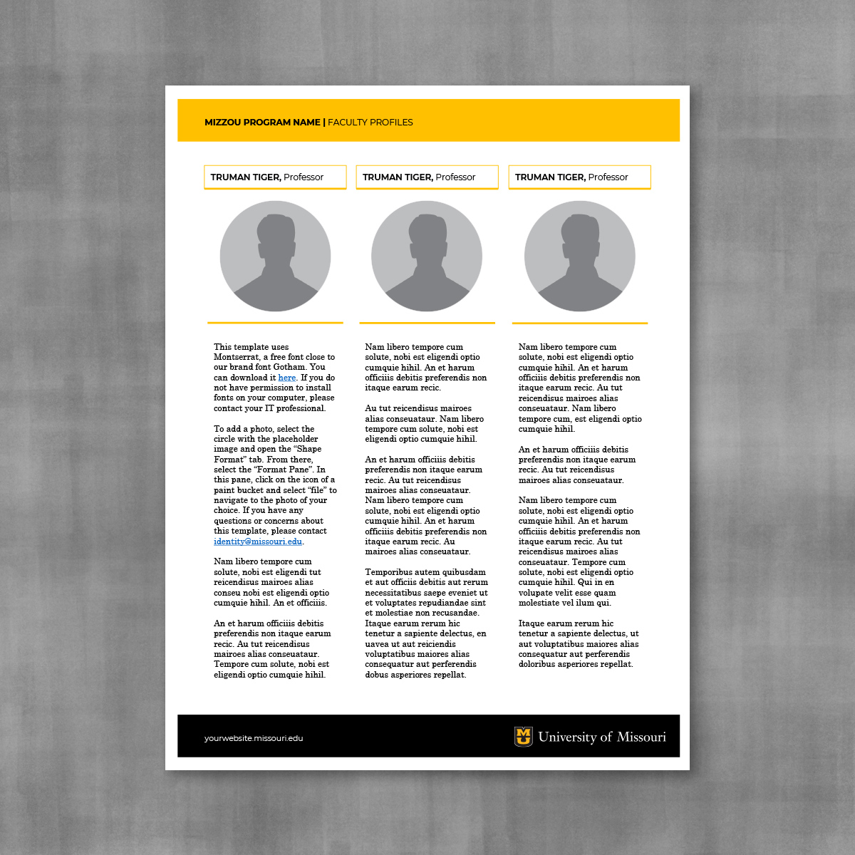 Personnel profile template for three people